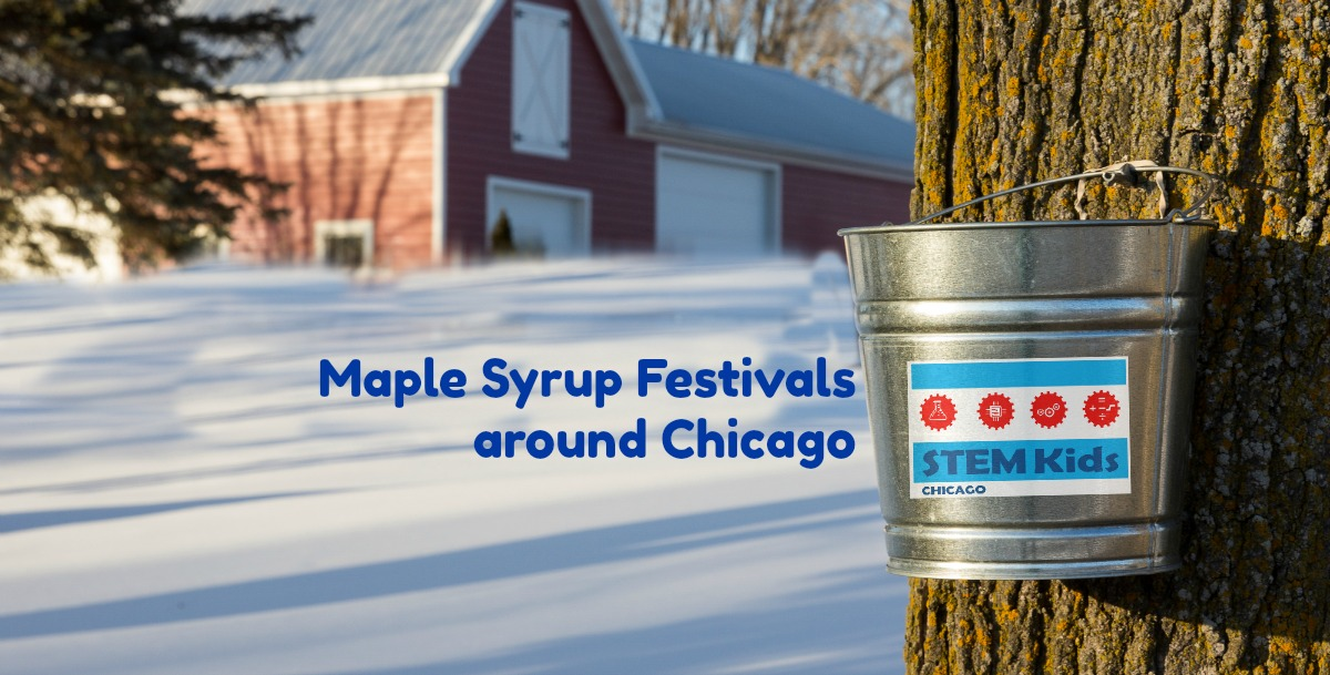 Chicago maple syrup tree tapping and festivals